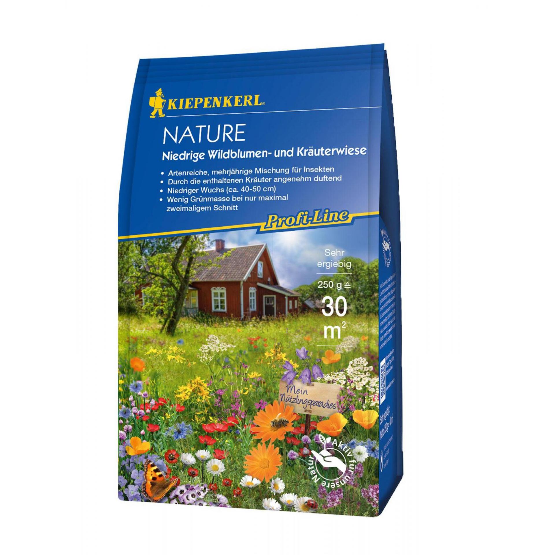 Niedrige Wildblumen- und Kräuterwiese Nature